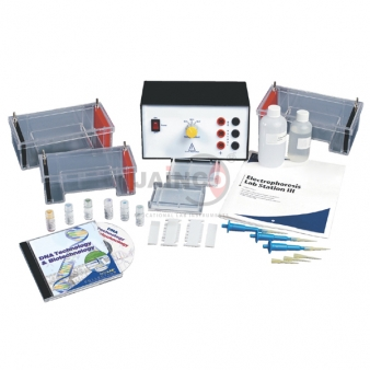 Electrophoresis Equipments