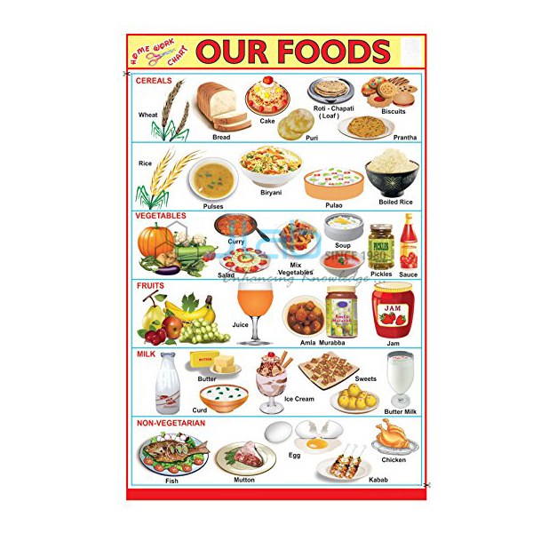 Our Food Chart India Our Food Chart Manufacturer Our