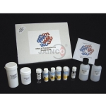 Effect of Temperature on Enzymes kit